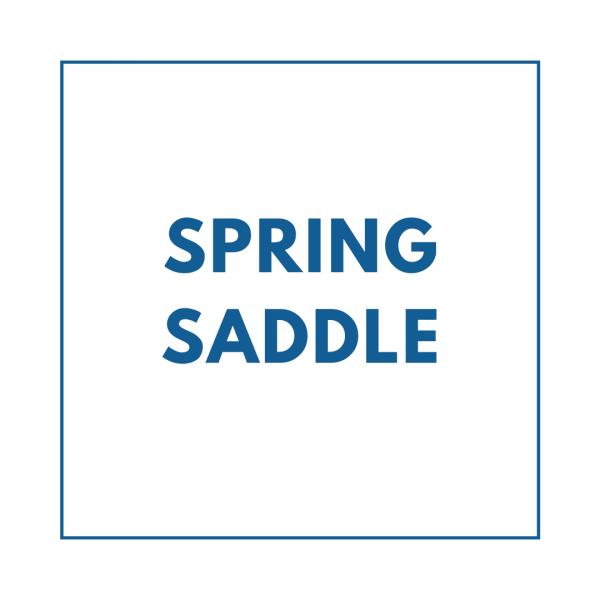 Spring Saddle