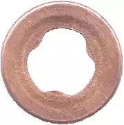Inj Washer Flat