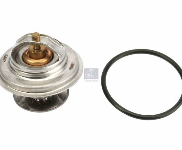 Thermostat + O Ring 71*